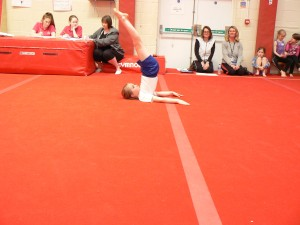 Gymnastics Comp&Netball Leaders 256